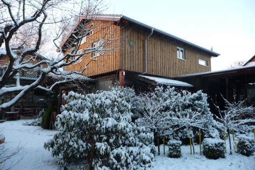 westerwald-ferienhaus-Gartenblick-im-Winter-002